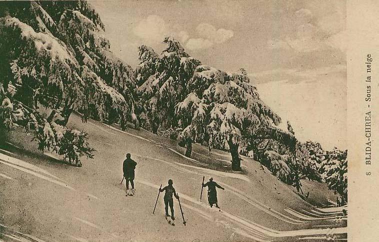 Blida chrea sous la neige