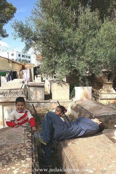 Cimetiere juif de saida les enfants du gardien