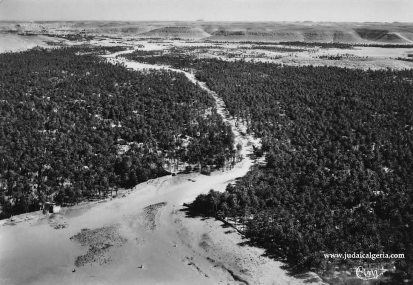 Ghardaia la palmeraie