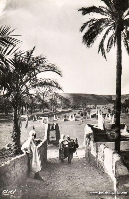 Ghardaia les puits dans l oued