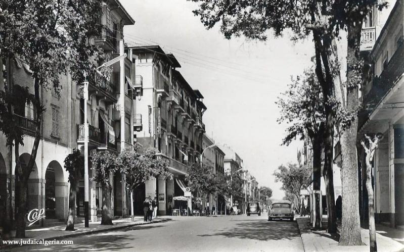 Setif avenue george clemenceau2 1