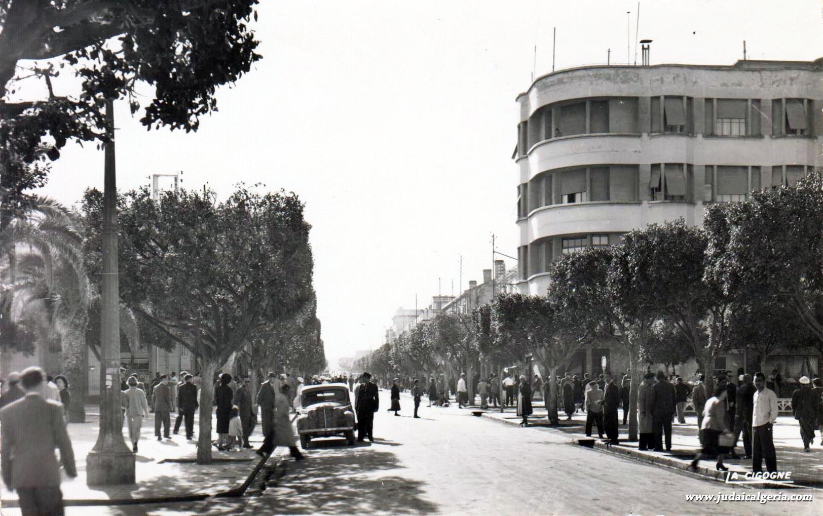 Ain temouchent boulevard national