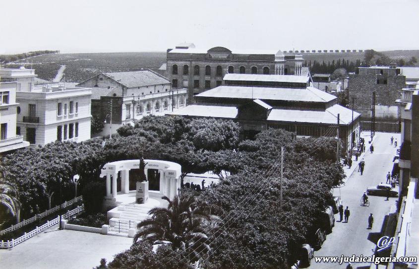 Ain temouchent place gambetta