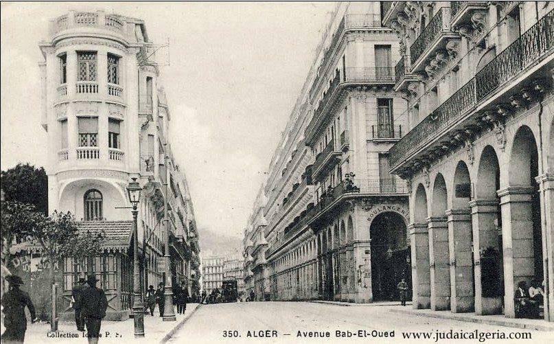 Alger avenue de la marne