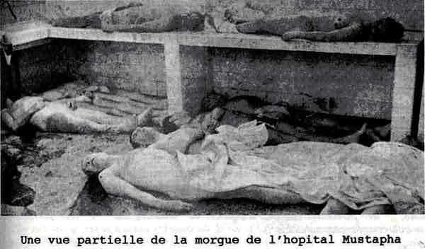 La morgue de l hopital mustapha