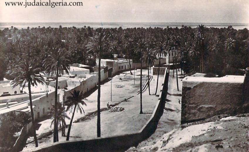 Laghouat panorama sur la palmeraie sud