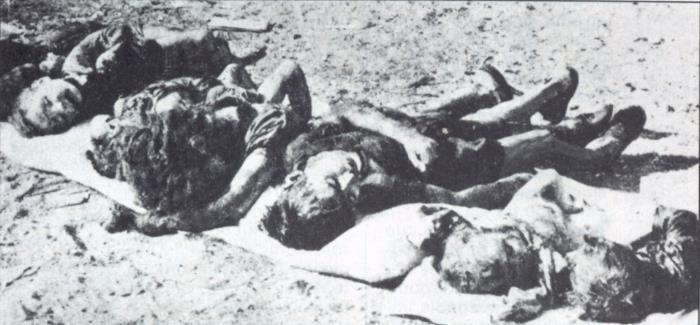 Massacre d elhalia