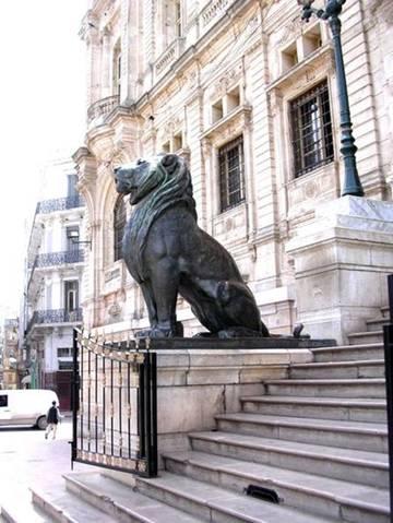 Oran lions sculptes a m entree de la mairie