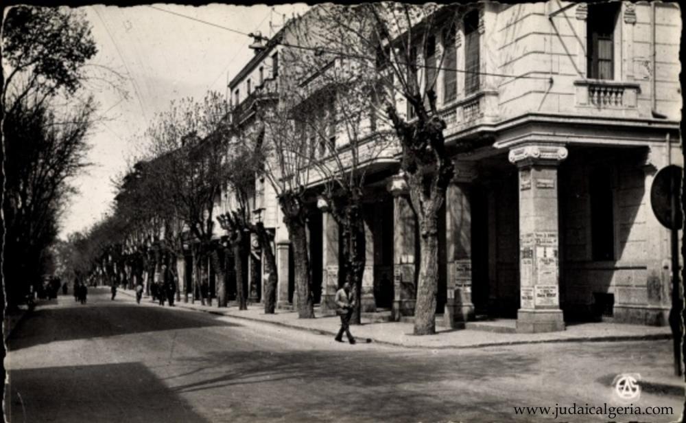 Setif avenue clemenceau