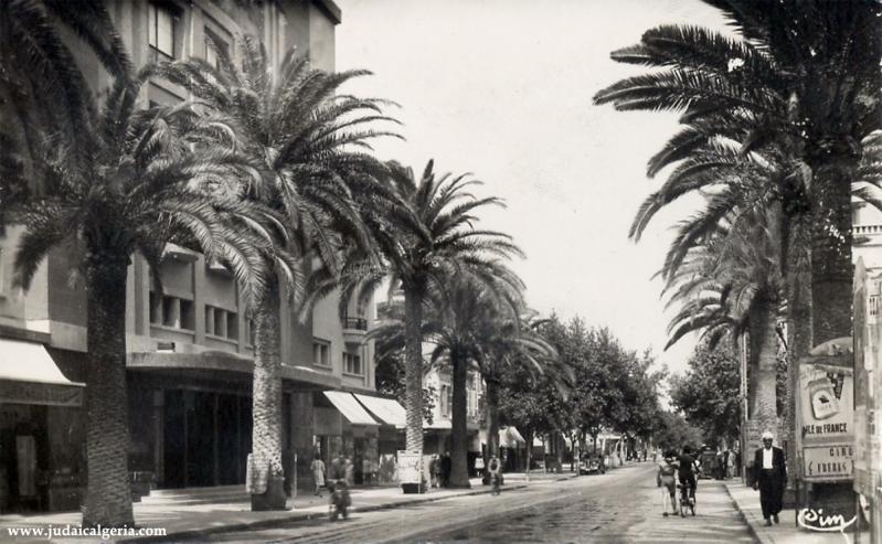 Sidi bel abbes boulevard de la republique