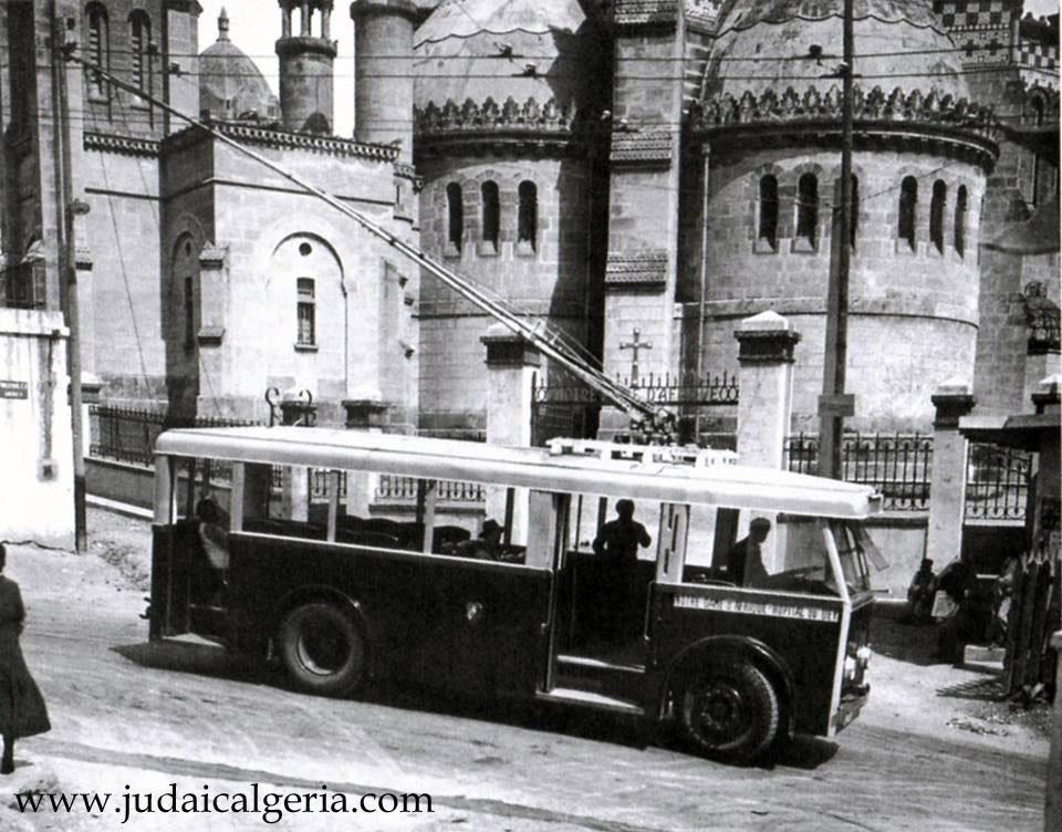 Trolley bus a nd d afrique